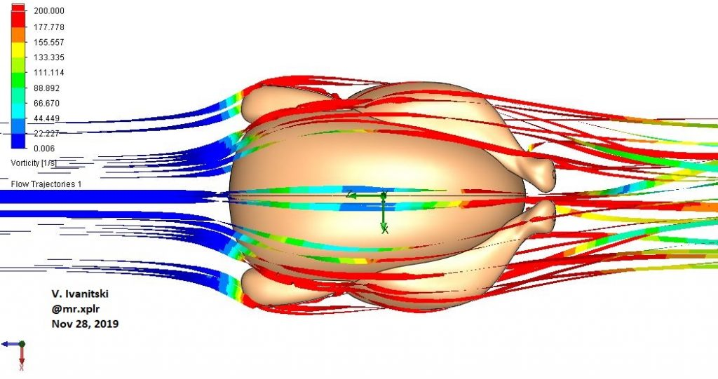 Thanksgiving aerodynamics of a turkey