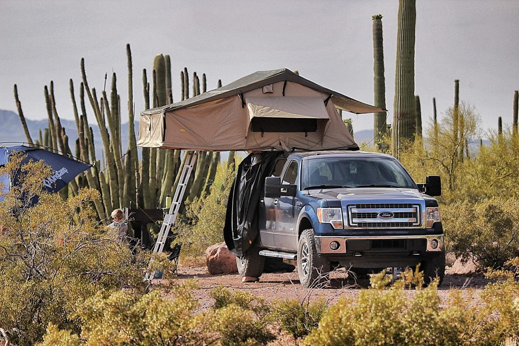 Overland setup at Organ Pipe Cactus National Monument. 2014 F150 with Raptor wheels and 35in tires